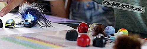 'S Werelds Kleinste Robot