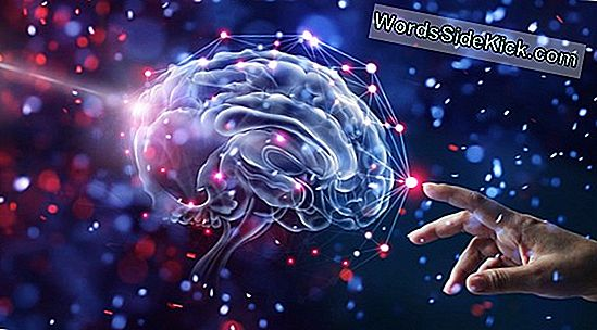 Brain'S Courage Center Gevestigd