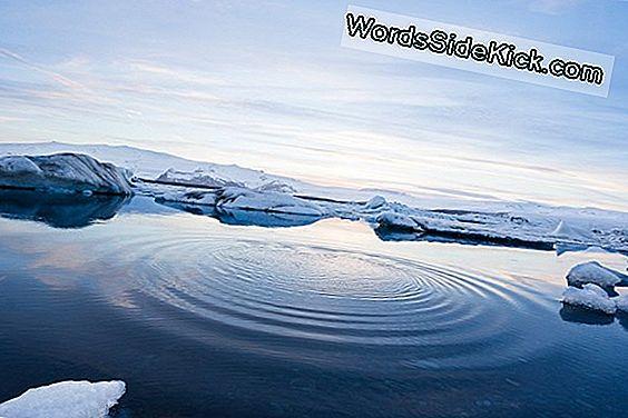 Arctic Summer Zou In 2040 Ijsvrij Kunnen Zijn