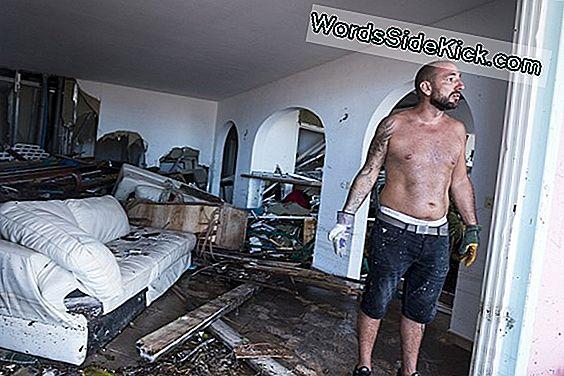 Hoe Orkaan Irma'S Winden (Tijdelijk) Uitgeputte Baai Van Tampa