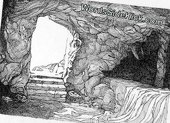 Tomb Drawing Toont Mongoose Aan De Leiband, Puzzelspelende Archeologen