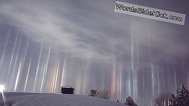 Alien Glow? Briljant Licht Pijlers Verschijnen Boven Canada
