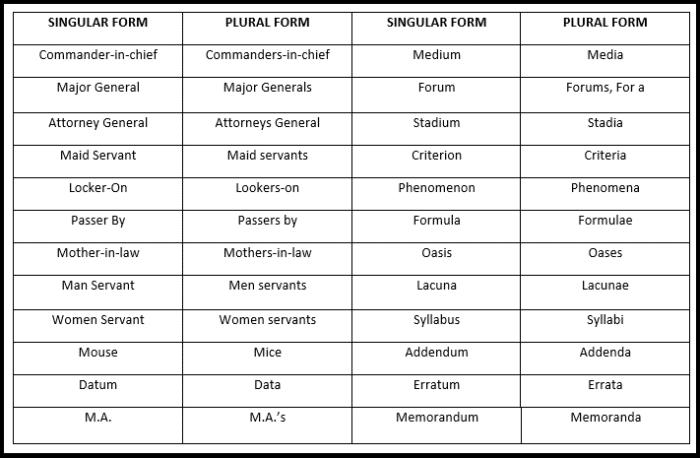 Plural forms of certain nouns