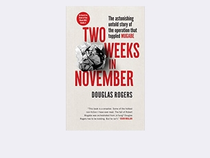 Book cover for Two Weeks in November