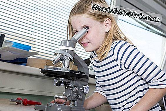 De Wetenschappelijke Doorbraken Die 2011 Mei Brengen